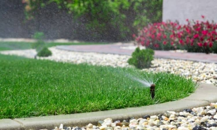 A rain gauge can provide information about the amount of irrigation water