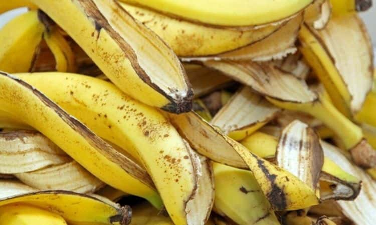 banana peals
