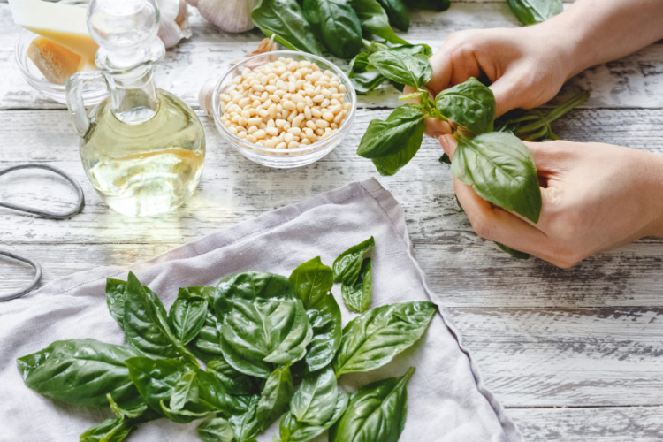 A good way to preserve basil is as a pesto