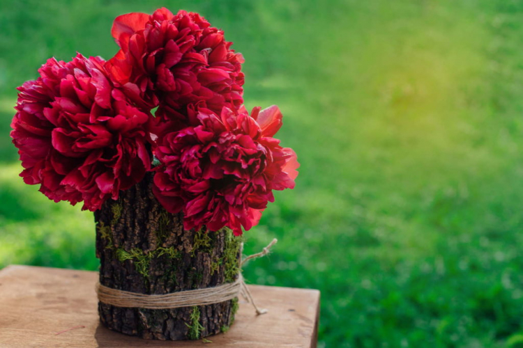 When the peony grows in a pot, there are a few things to consider