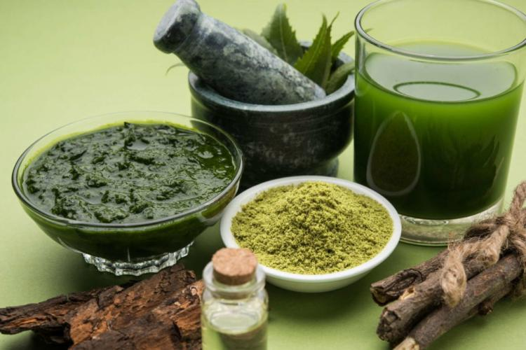 Neem oil can also be used in humans