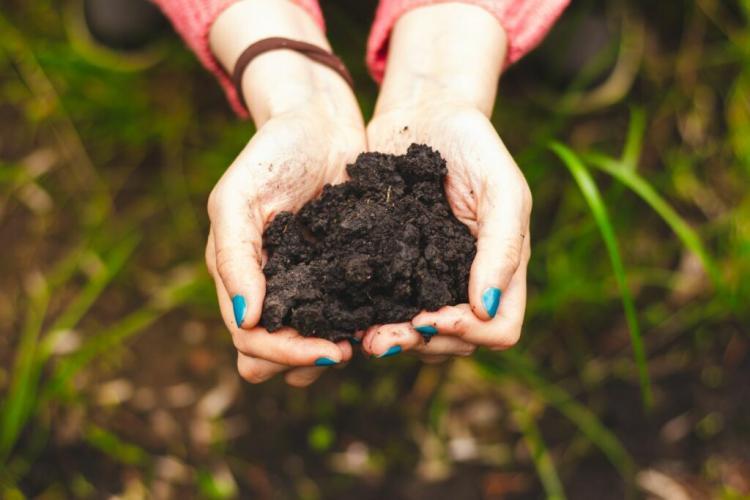 soil aktivator